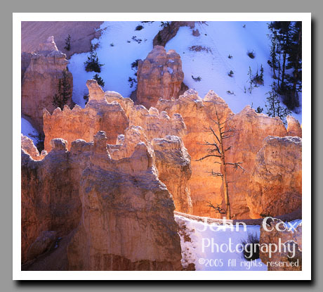 Swamp Canyon, Bryce Canyon National Park, Utah